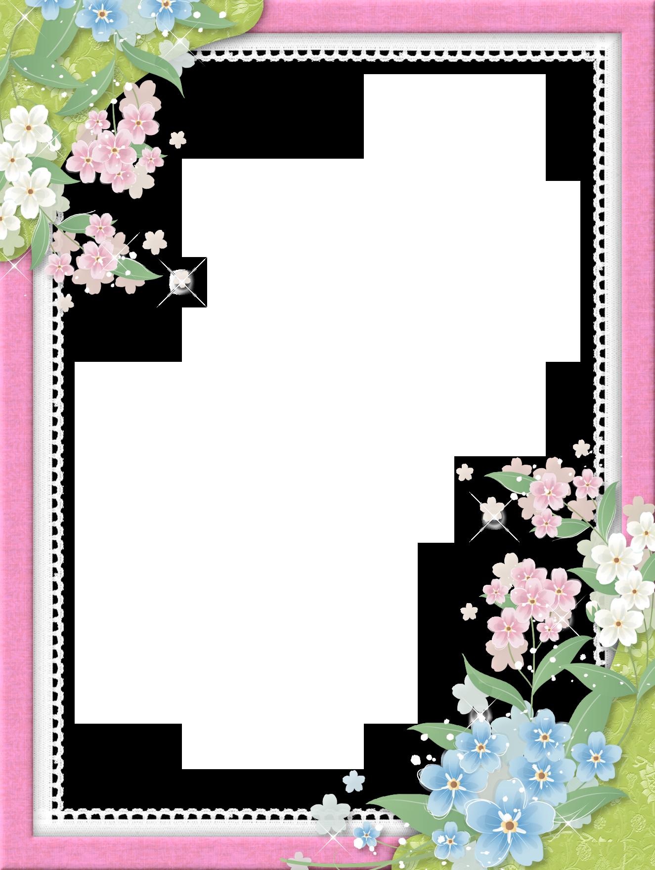 Pink Transparent Frame with Flowers   floral frames ...