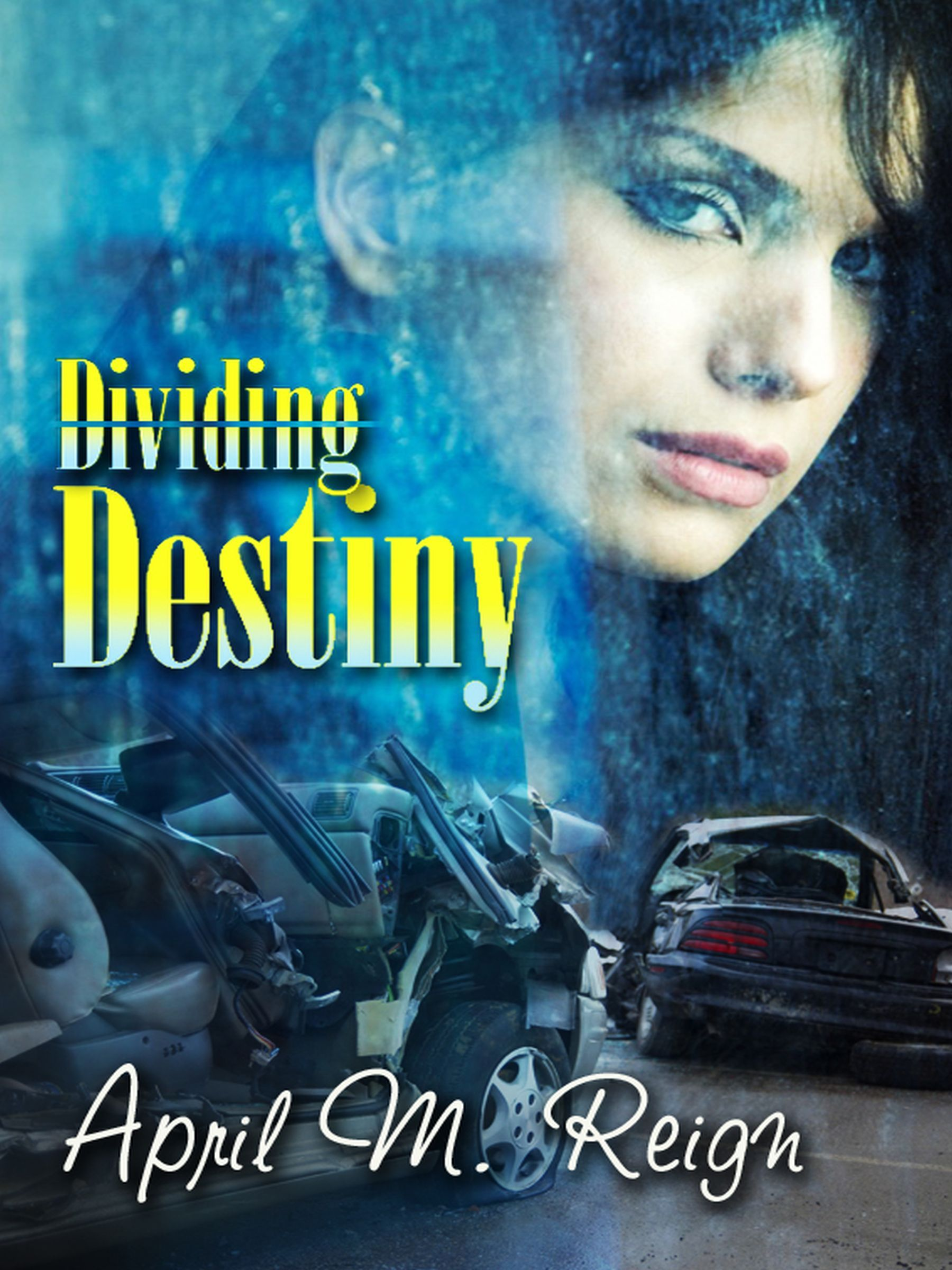 Private investigator Destiny Parks has spent her adult life trying