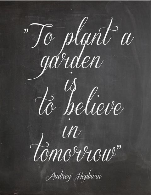 To plant a garden is to believe in tomorrow , Audrey Hepburn