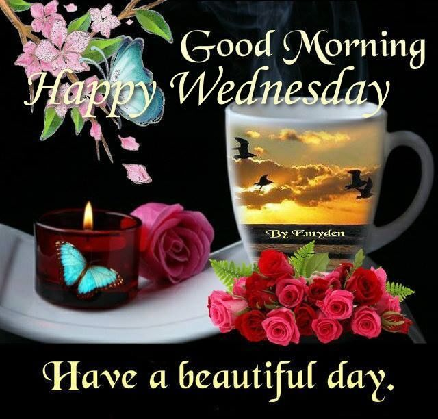 Good Morning Sunshine Have A Beautiful Day : Good morning happy wednesday have a beautiful day pictures