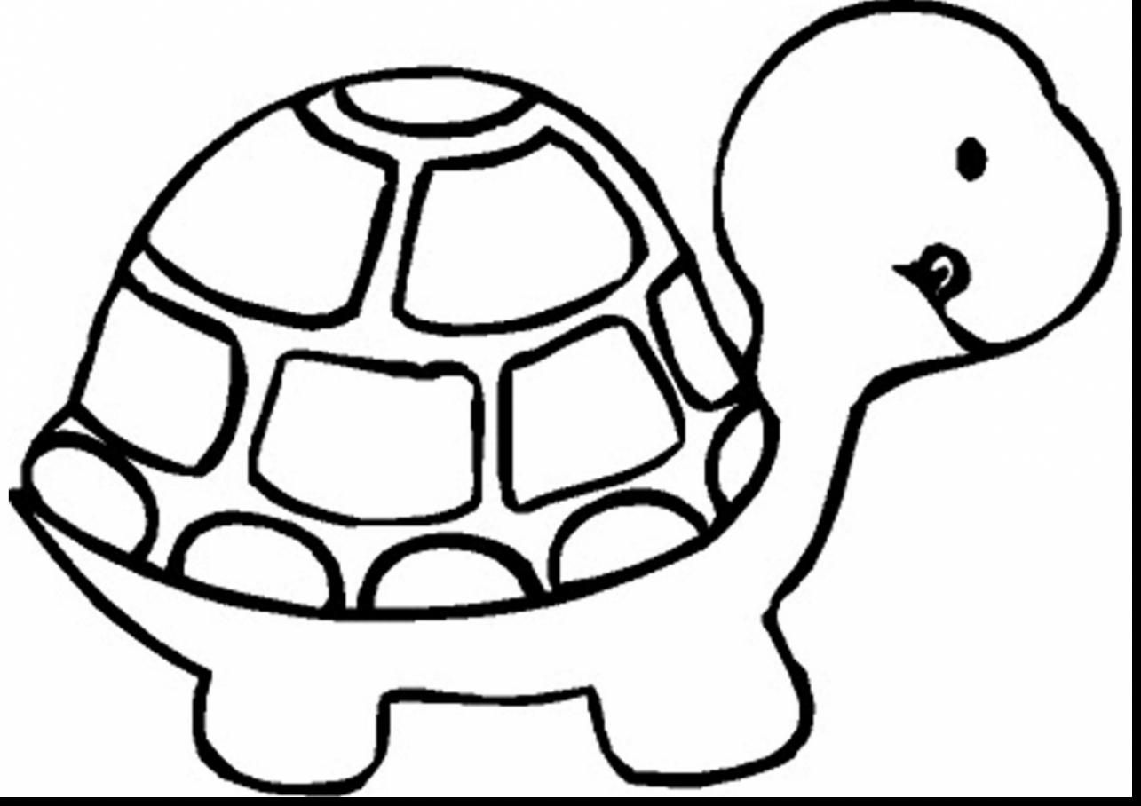 marvelous turtle coloring pages to print with cute cat coloring