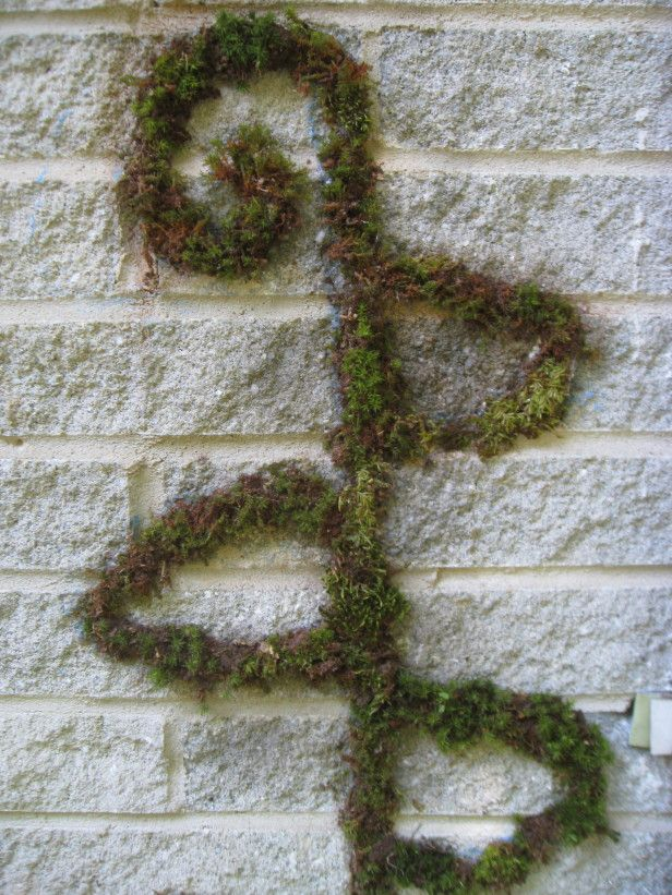 Make Your Mark With DIY Moss Graffiti! --> http://www.hgtvgardens.com/photos/make-moss-graffiti?soc=pinterest