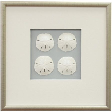 Featuring Rows Of Sand Dollars Against A Solid Background This Framed And Matted Wall Decor