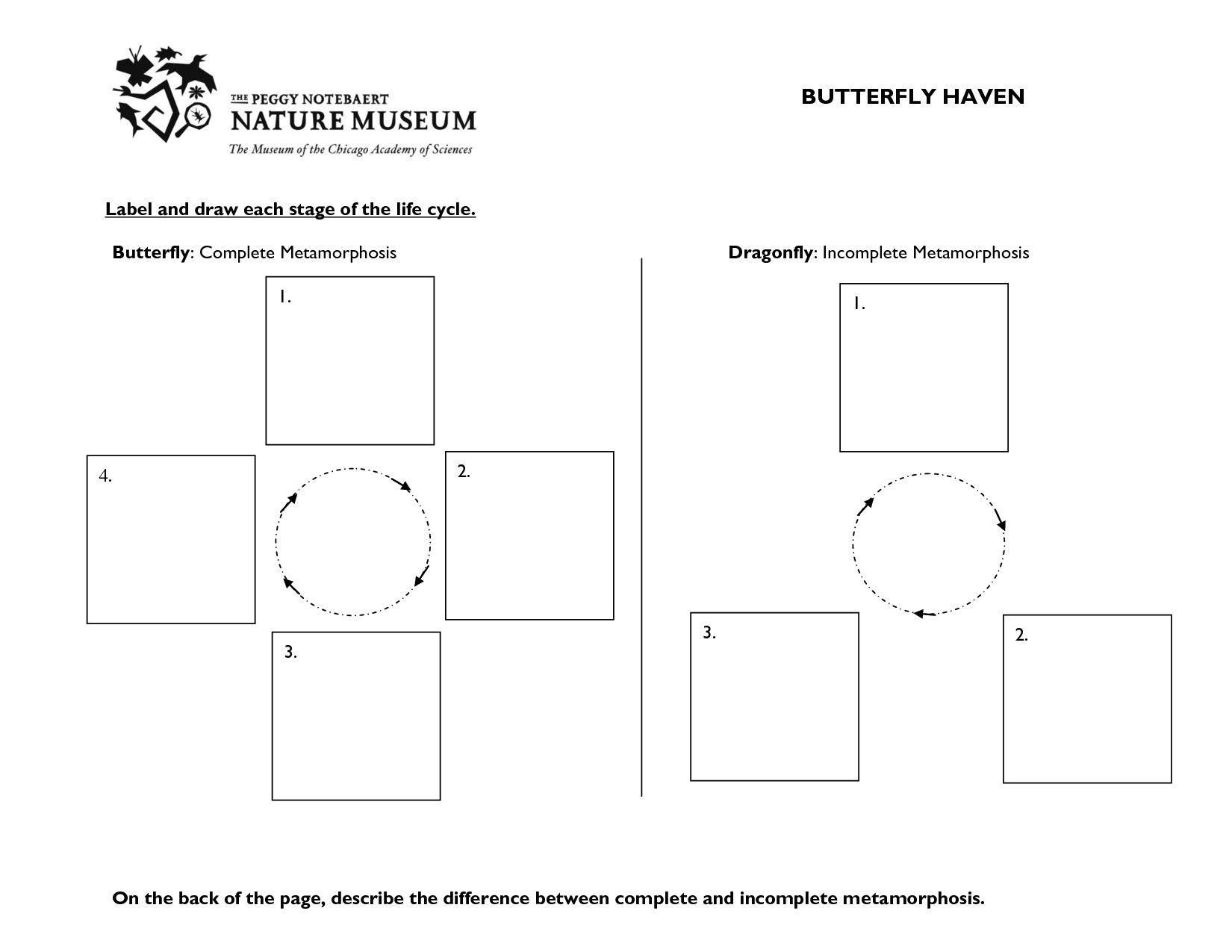 5 Memorable Mountain Math 4th Grade Worksheet