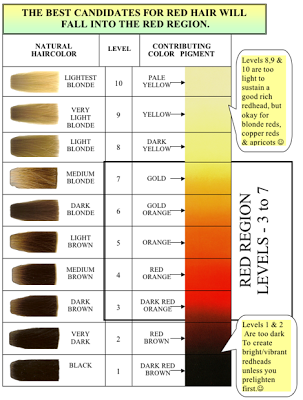 Shades EQ Color Wheel - Bing images | Hair Color | Pinterest ...