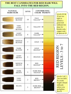 Shades Eq Color Wheel Bing Images Hair Color Pinterest Hair