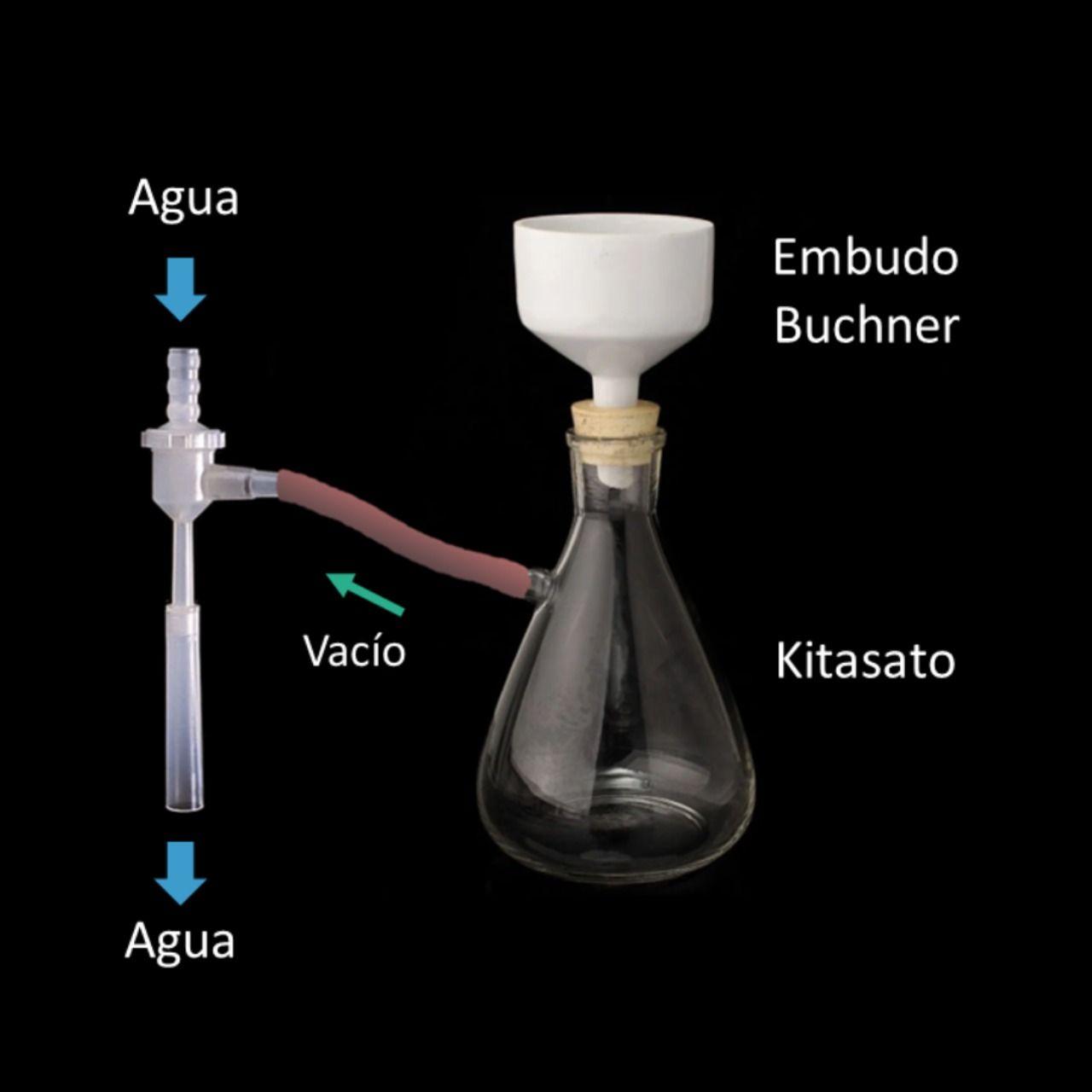 Filtración Con Kitasato Elaboracion Del Vino Hacer Vino Vino