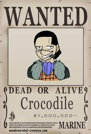 One Piece Wanted Posters Crocodile, Our One Piece Manga Collection - create a wanted poster free