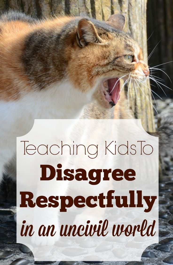 How do we teach children to disagree in a respectful way when they have no role models, at least no public role models, to show them how?