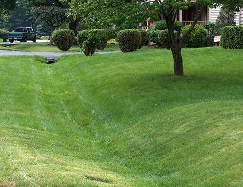 A Mowed Grass Swale Gardening Pinterest Drainage