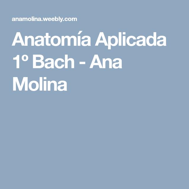 Anatomía Aplicada 1º Bach - Ana Molina | Actividades prácticas ...