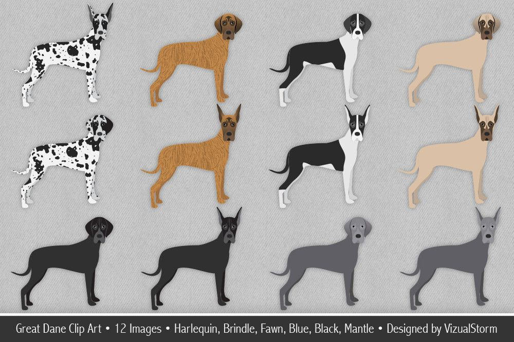 Great Dane Clip Art Images By Vizualstorm These Handmade Great