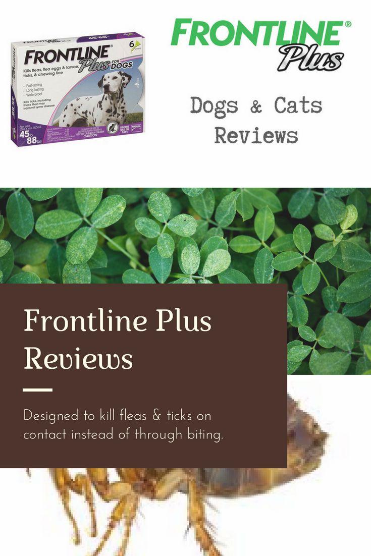 Cheristin for Cats 6 ct Flea treatment, Flea control