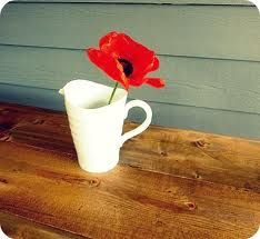 Red Poppy! Less is more...