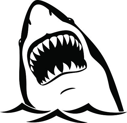 Thumb7 Shutterstock Com Display Pic With Logo 1387945 231102025 Stock Vector Shark Attack Jaw Teeth Mad Furious Shark Illustration Shark Pictures Shark Drawing