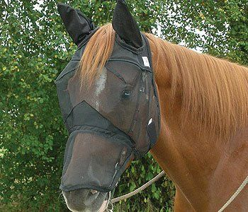 Full Face -Black Mesh Horse Fly Mask Equine Fly Mask with Ears and Long Nose for Baby Large Horses Small