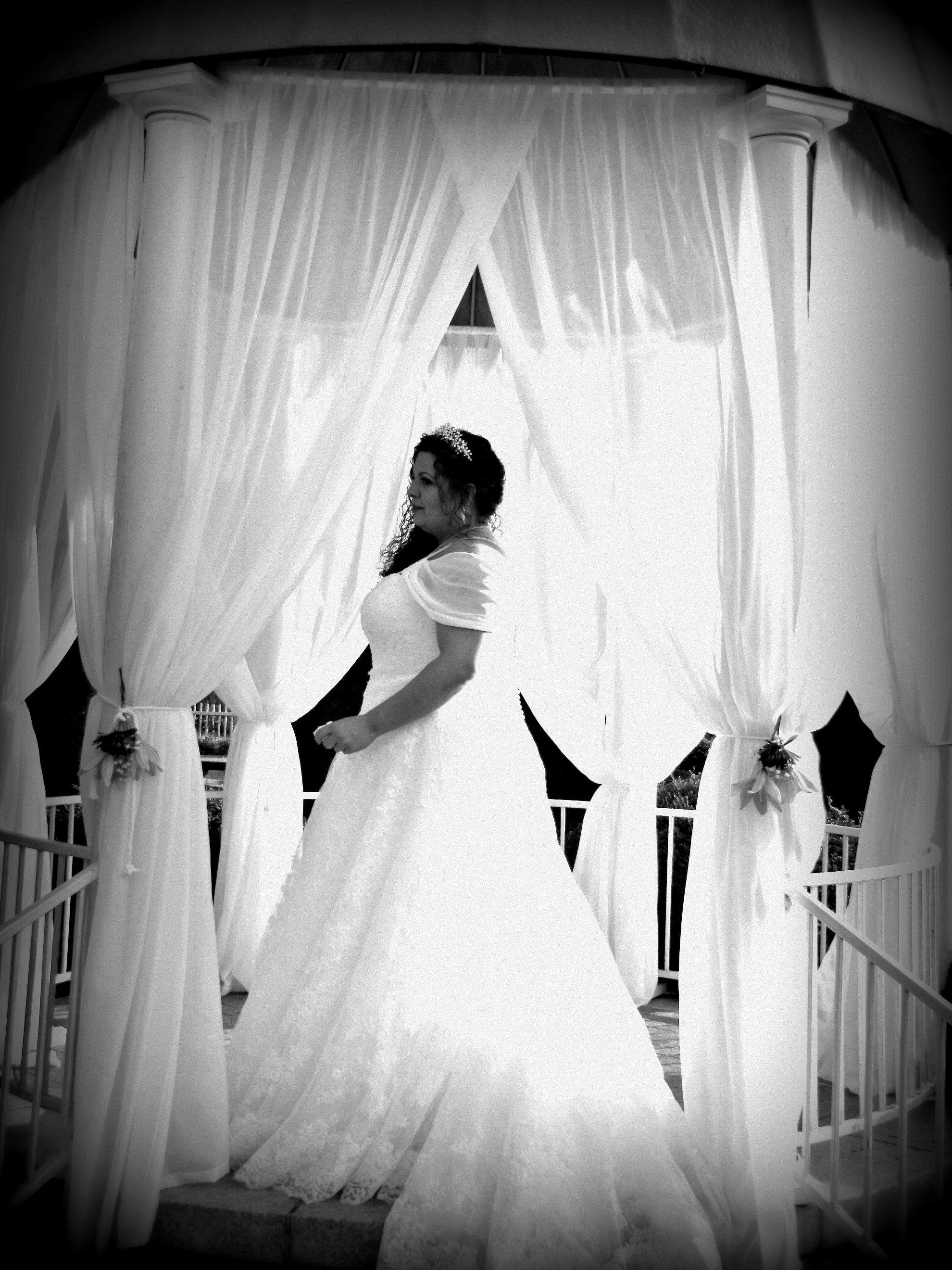 Black And White Bridal Photo Blackhaven Wedding Gardens Lesbian Wedding Plus Size Bride Plus Size Bride Lesbian Wedding White Bridal