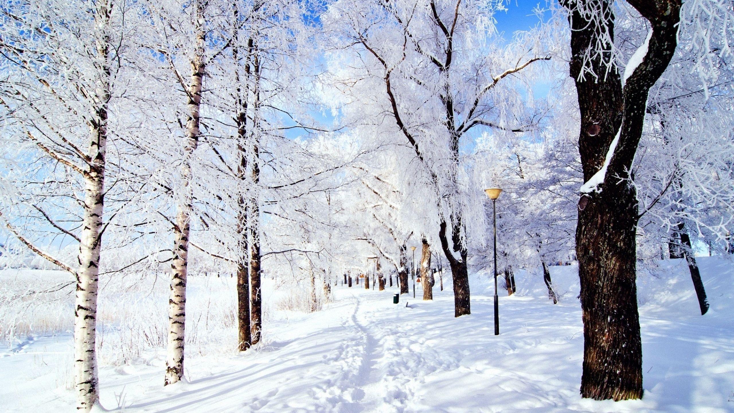winter christmas mac wallpaper download free mac wallpapers download
