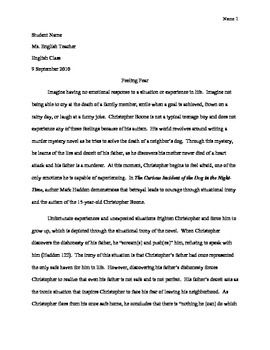 Analysis Essay Example