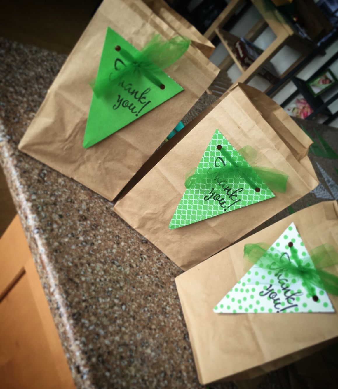 Emerald City Diy Goodie Bags All You Need Is A Hole Punch Tulle Paper And A Thank You Stamp Aileengprojects Diy Goodie Bags Goodie Bags Diy