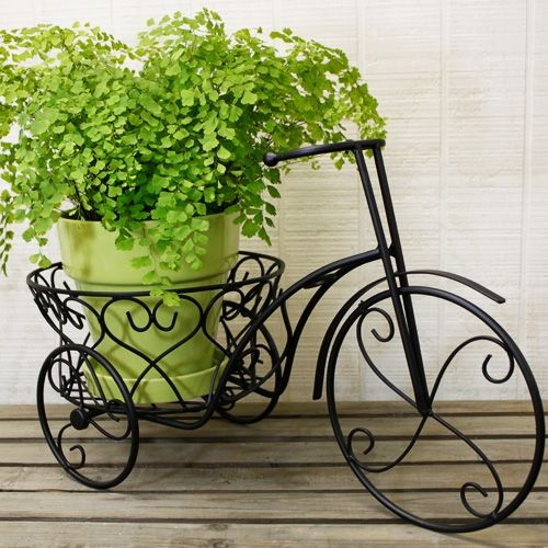 Iron Bicycle Plant Holder Black With Images Plant Holders