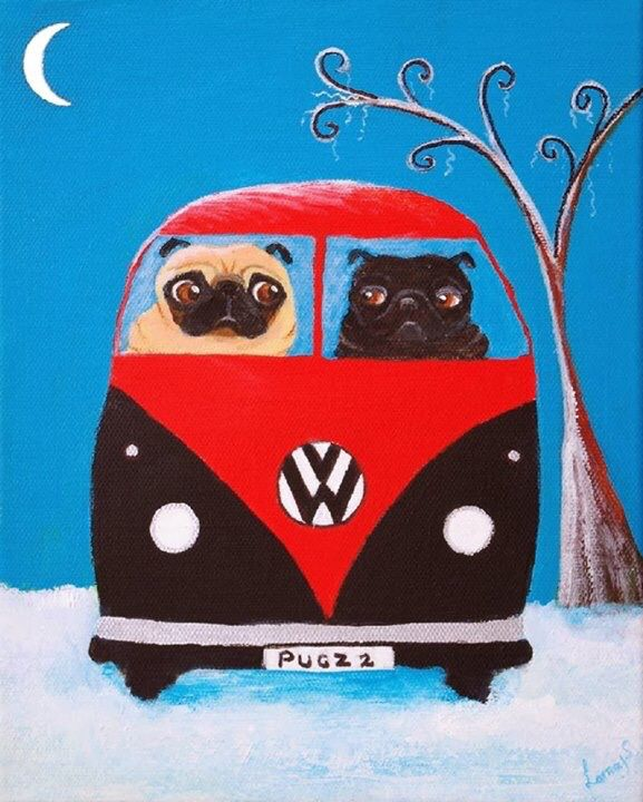 2 Pugs In A Vw Bug Cute Pugs Pugs Funny Pugs And Kisses