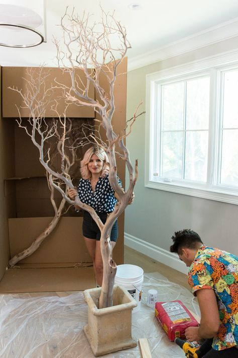 Photo of Huge house trees! Manzanita branches and cement! Mr. Kate – DIY Indoo …