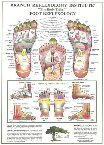 100 Online Free E Course With David Avocado Wolfe Reflexology