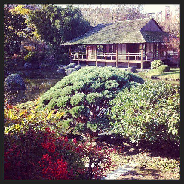 Gagnant de la catégorie Jardin japonais @rilaz