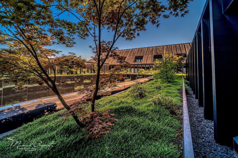 Ist Das Nicht Traumhaft So Grun Mitten In Munchen Bei Der Besichtigung Einer Absoluten Traumwohnung Mitten In Der Munchner Inn Dachgarten Garten Design Garten