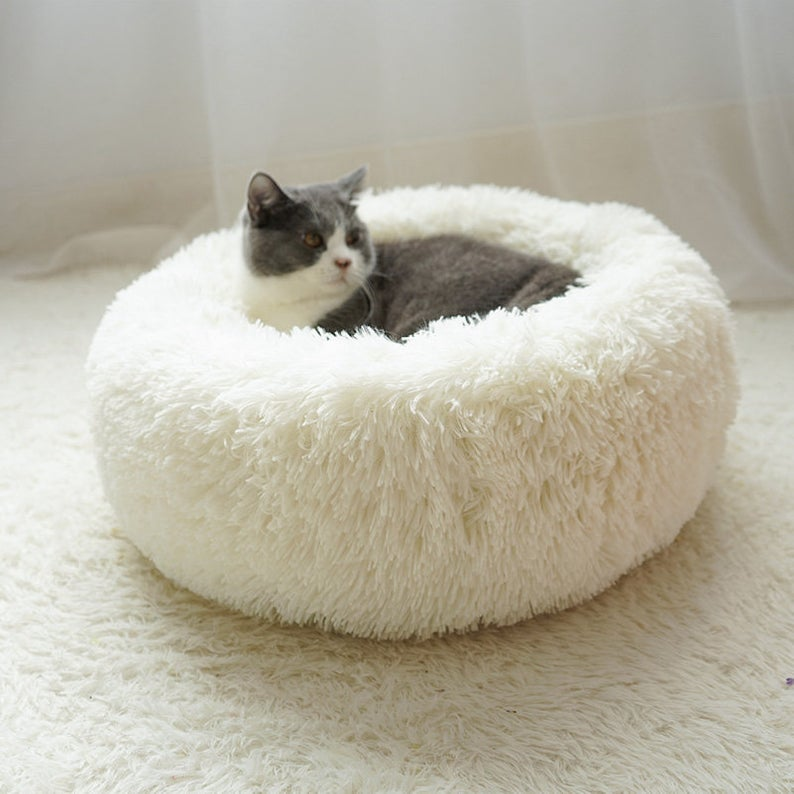 Nordic Fluffy Doughnut Cat Dog Bed Dog bed, Pet beds