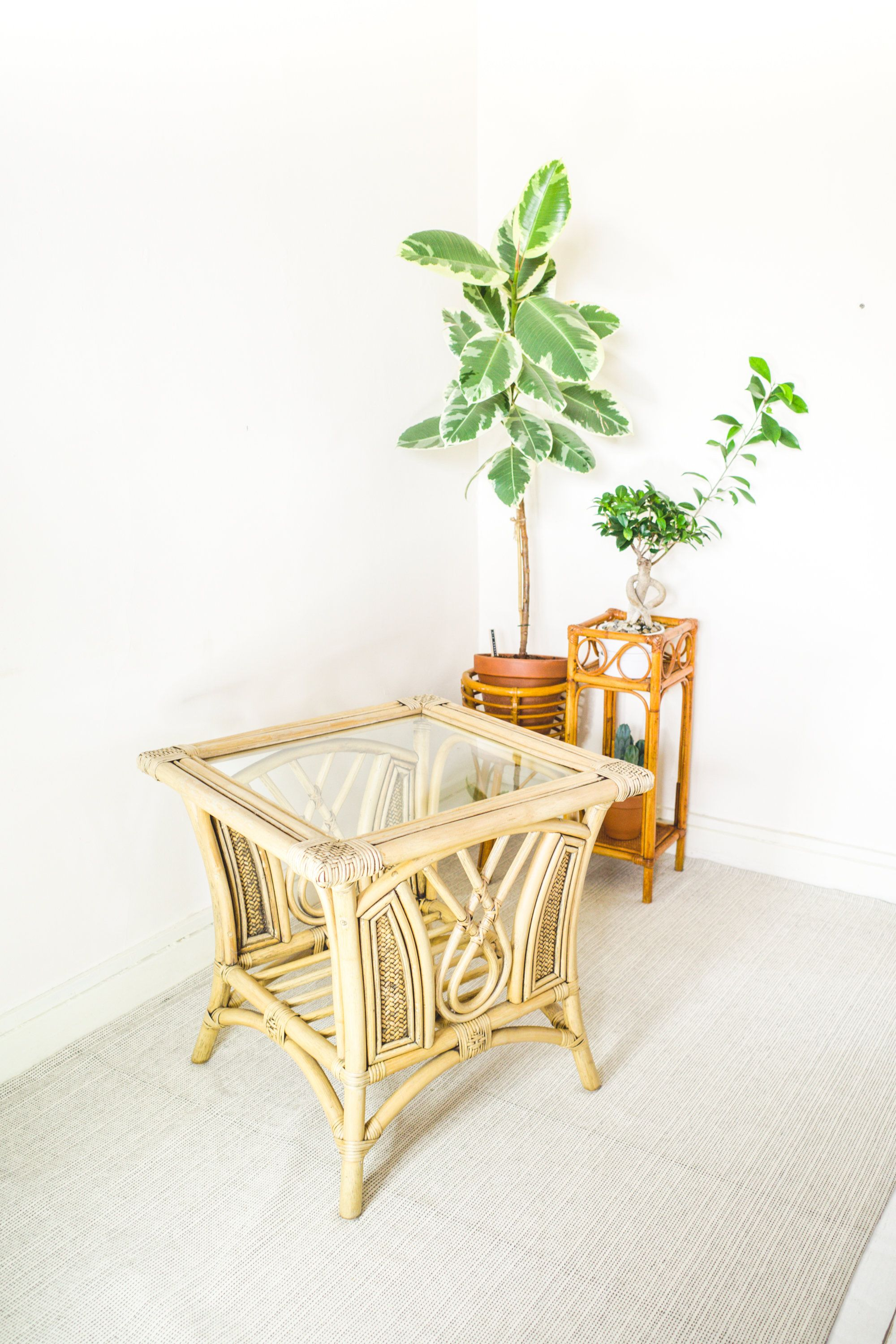 Mid Century Bamboo Cane Glass Top Coffee Table Wicker Side Table Rattan Plant Stand Vintage Boho Hom Wicker Side Table Glass Top Coffee Table Bamboo Canes [ 3000 x 2000 Pixel ]