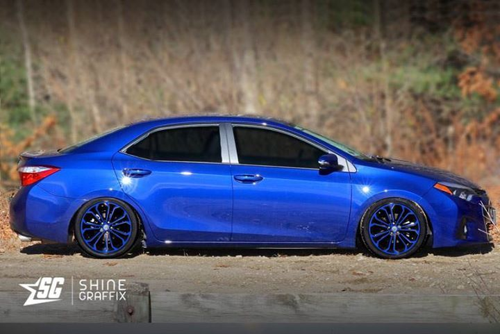 Blue  #Corolla #wheels #decals #Toyota #corollanation #toyotanation #TRD #jdm http://buff.ly/2bUIidr