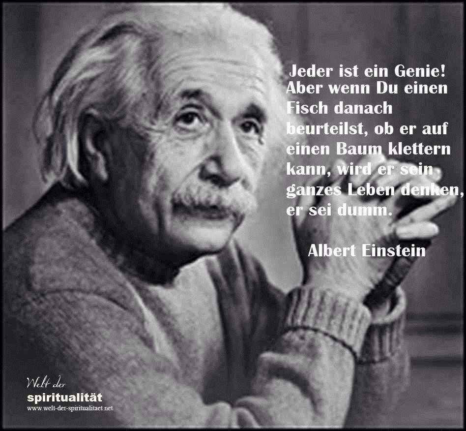 Pin Von Marlies Hallberg Auf Pinterest Deutsch Einstein Zitate Von Albert Einstein Einstein Zitate