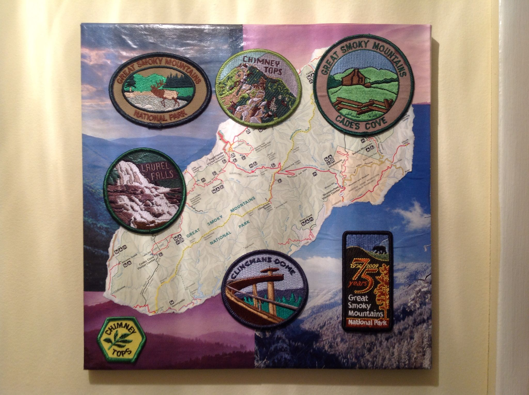 More of my patch displays patches from great smoky mountains 12 x more of my patch displays patches from great smoky mountains 12 x 12 canvas gumiabroncs Gallery
