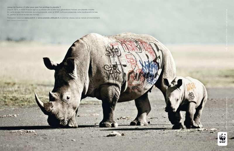 Préférence Animal protection: Les campagnes de pub de WWF | Pub | Pinterest MY37