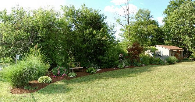 trees or bushes for privacy fence trees mixed with shrubs privacy fence bing images. Black Bedroom Furniture Sets. Home Design Ideas