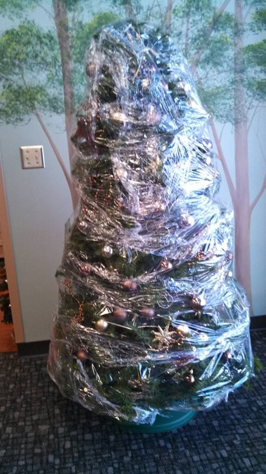 shrink wrap your christmas tree before you put it away buy the 26 - What Do You Put In Christmas Tree Water