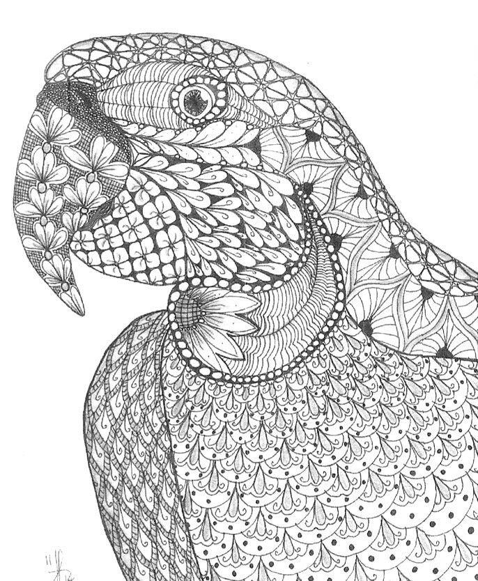 Mandala Kleurplaten Poezen Pin Van Geja Spruit Op Zentangles Mandala Kleurplaten