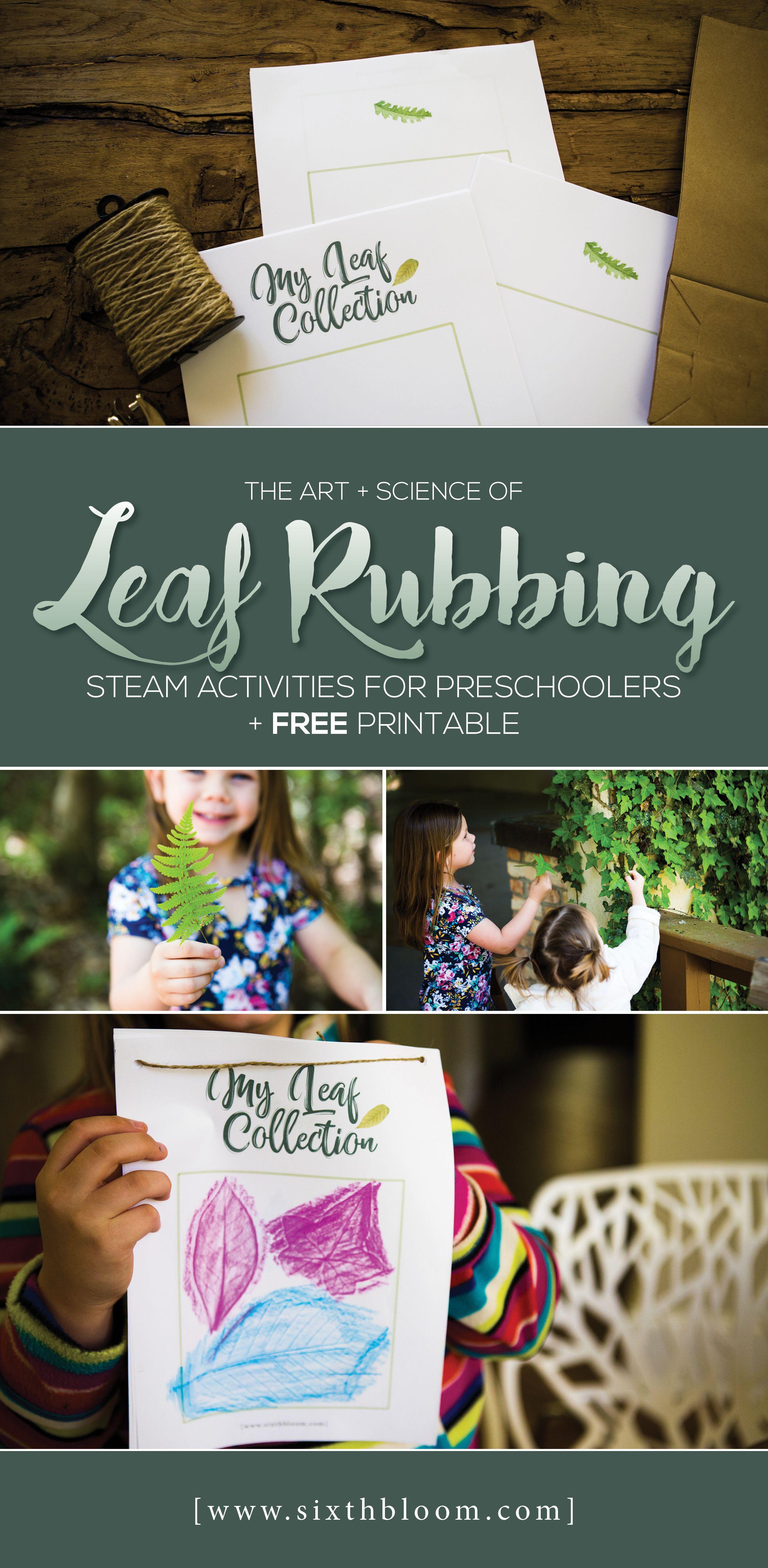 Leaf Rubbing Steam Activities For Preschoolers Free