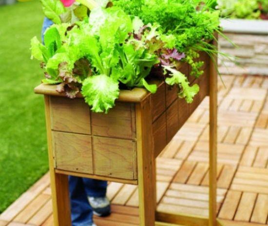 gemüse garten anlegen auf balkon salat kasten | garten | pinterest, Gartengerate ideen