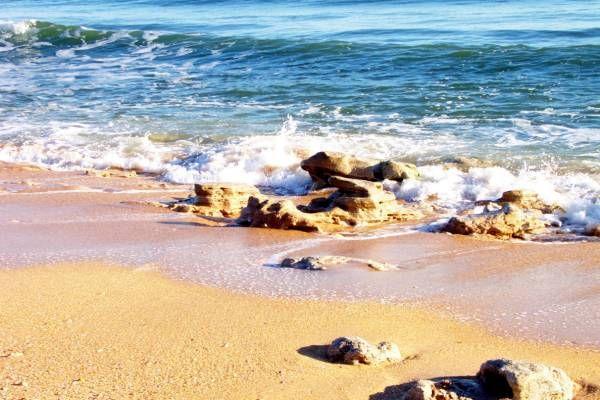 Palm Coast Fl Coquina Rocks On Hammock Beach