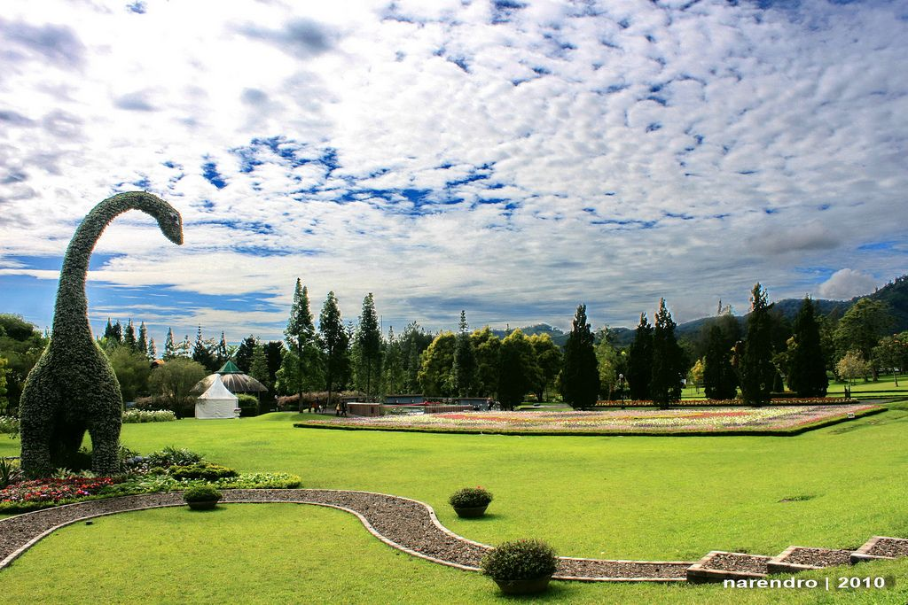 Taman Bunga Nusantara Flower Garden Cipanas West Java Indonesia Flower Garden Tropical Climate Garden