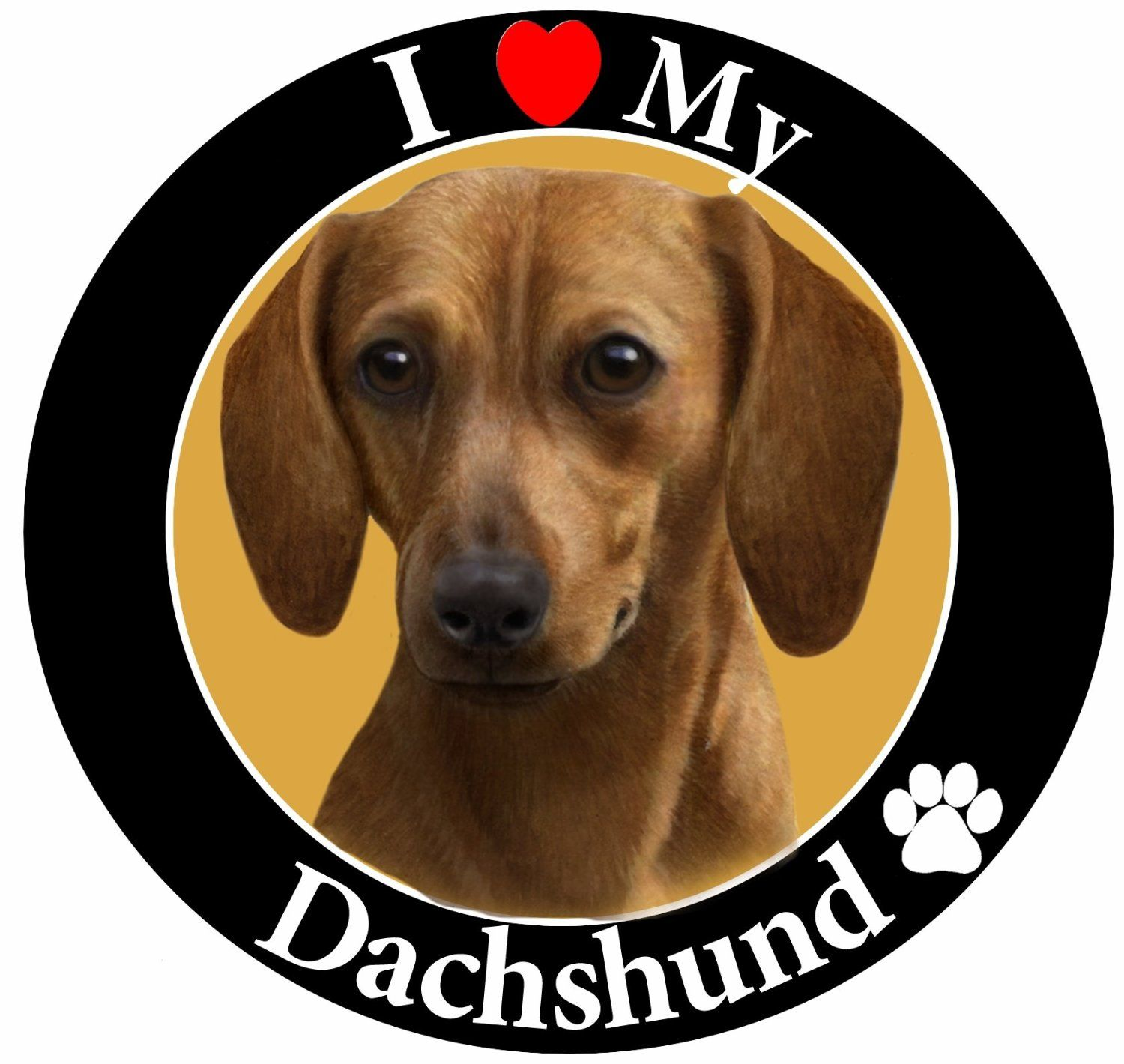 'I Love My Dachshund' Red Car Magnet With Realistic Looking Dachshund Photograph In The Center Covered In High Quality UV Gloss For Weather and Fading Protection Circle Shaped Magnet Measures 5.25 Inches Diameter >>> To view further for this item, visit the image link.