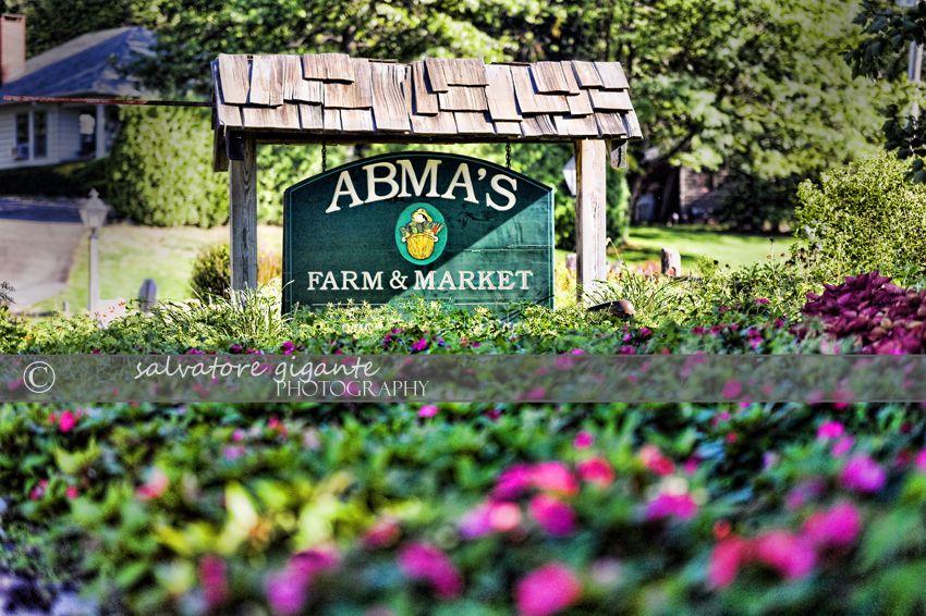Abma's Farm & Market Wyckoff NJ Photographer Farm