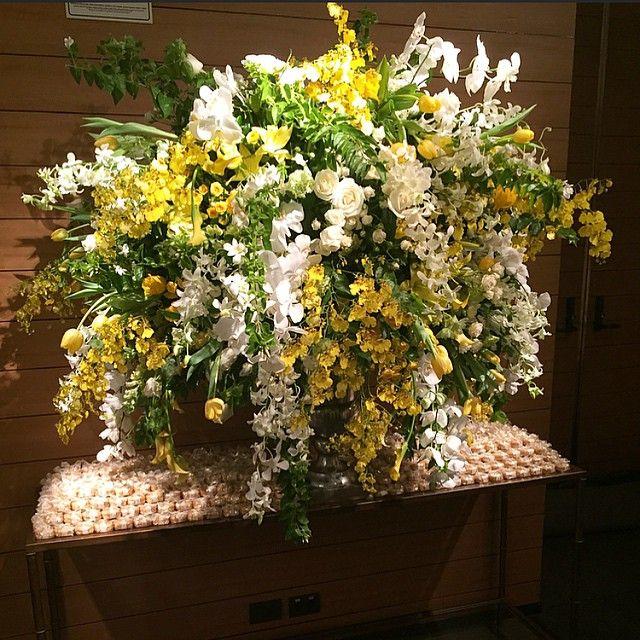 Flores  @jujudalsasso