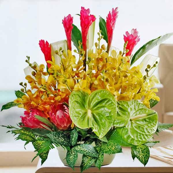 Green Anthurium Orchids Table Arrangement Fresh Flowers Arrangements Flower Arrangements Flowers