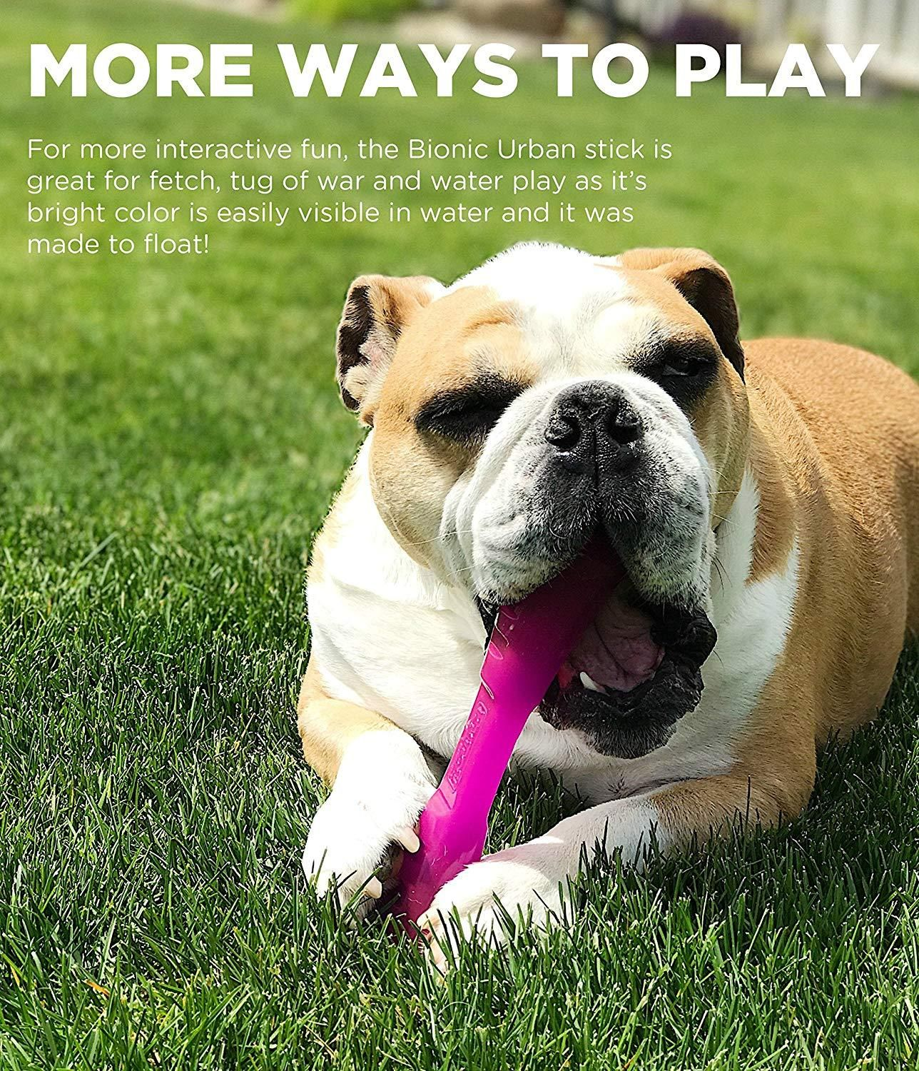 Urban Stick Durable Dog Toy For Strong For Chewers By Bionic