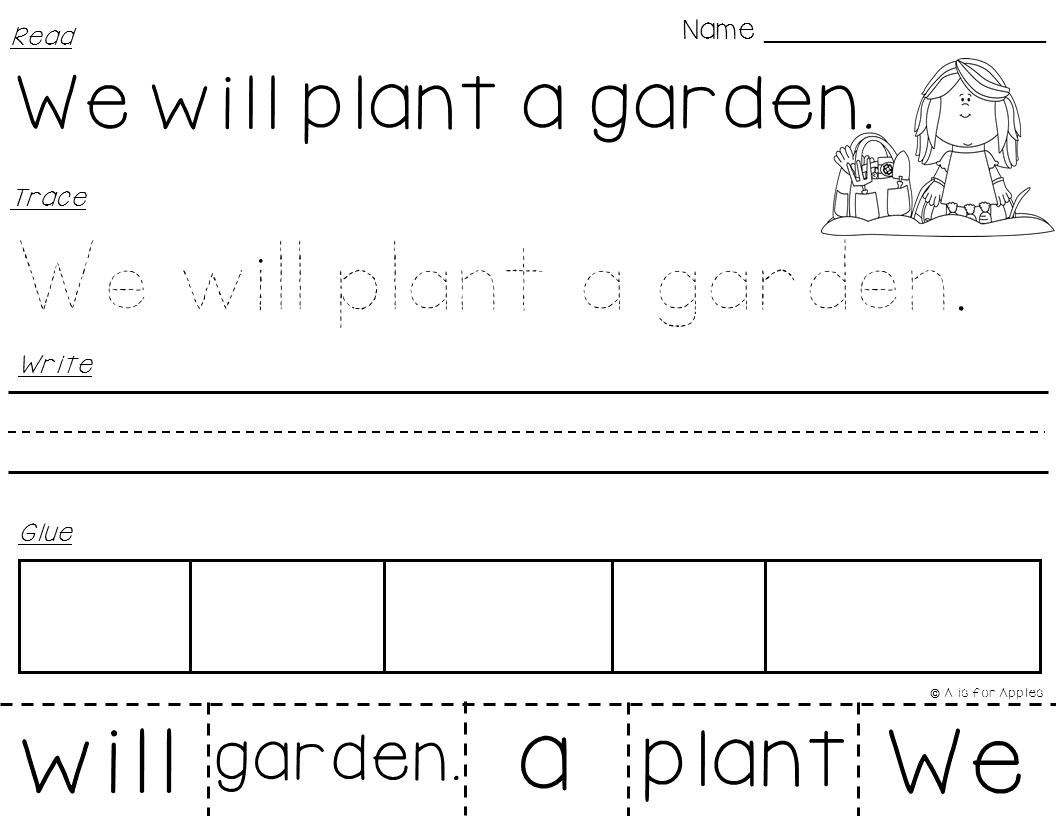 Spring Sentences Read Trace Write Glue