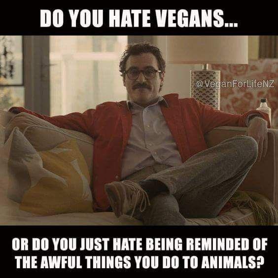 Truth Veganlife Crueltyfree Vegan Jokes Vegan Memes Vegan Quotes